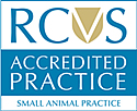 RCVS-Accredited